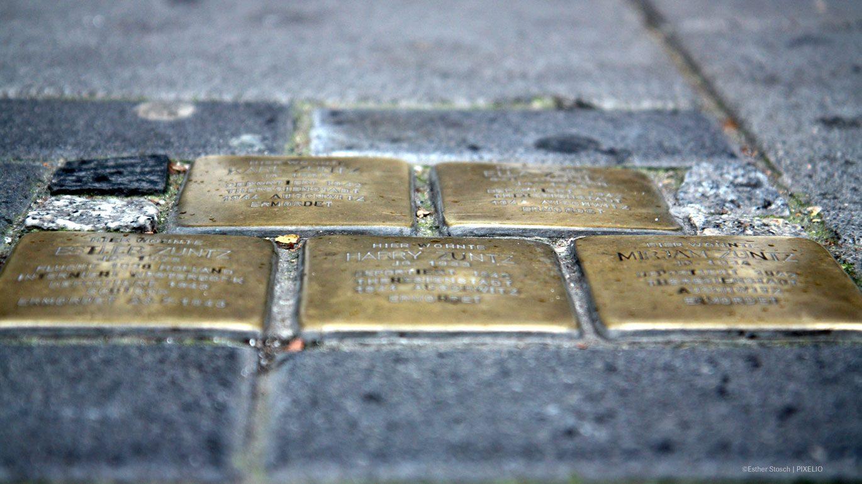 Stolpersteine erinnern an ermordete Opfer der NS-Zeit
